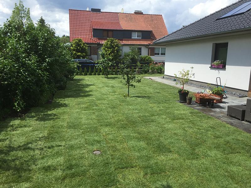 Gartenpflege Rollrasen